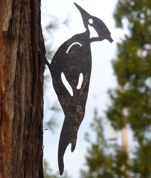 Cut