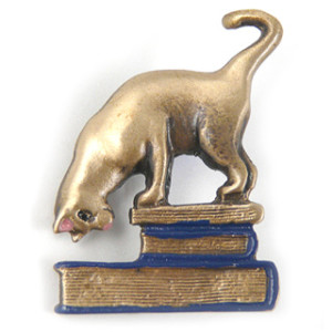 Brass Book Cat Pin