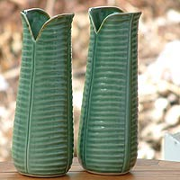 Ceramic vases, 'Nature Speaks' (pair)