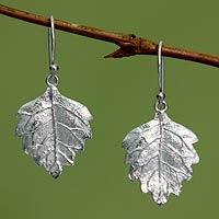 Sterling silver dangle earrings, 'Glistening Leaves'